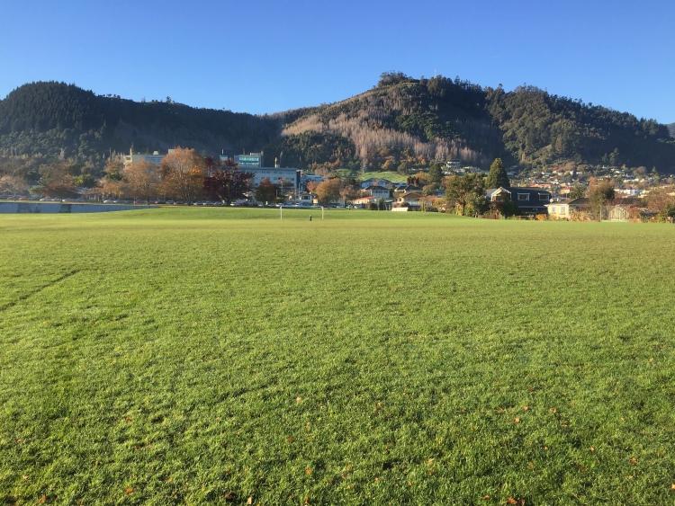 NZ Day 15