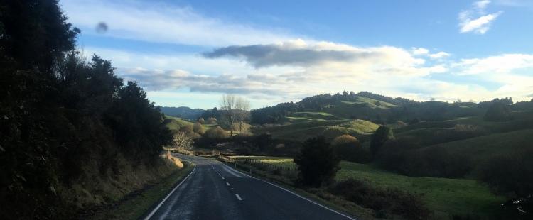 NZ Day 20