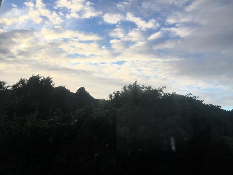 NZ Day 23